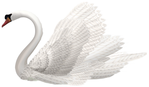 Fur vector swan feather. White png clipart image