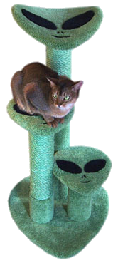 Furhaven tiger tough cat tree house furniture for cats and kittens png. The alien conspiracist lover