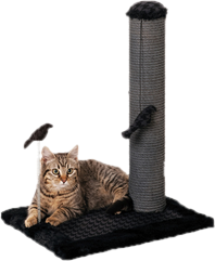 Furhaven tiger tough cat tree house furniture for cats and kittens png. Wayfair modern