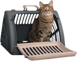 Wayfair carriers. Furhaven tiger tough cat tree house furniture for cats and kittens png clip library stock