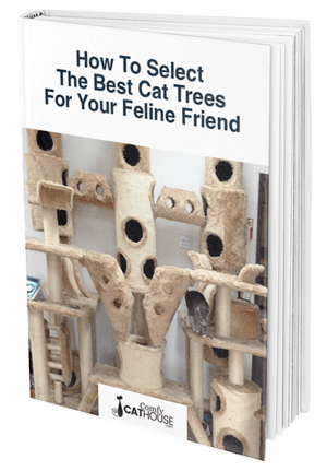 Condos comfycathouse com guide. Furhaven tiger tough cat tree house furniture for cats and kittens png image royalty free