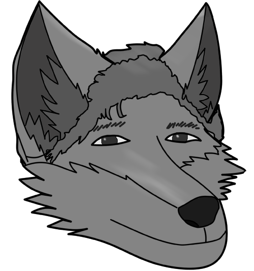 drawing furry wolf