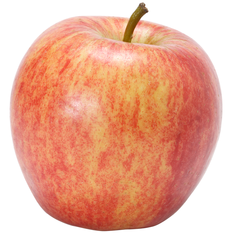 Gala apples png. How to pick at