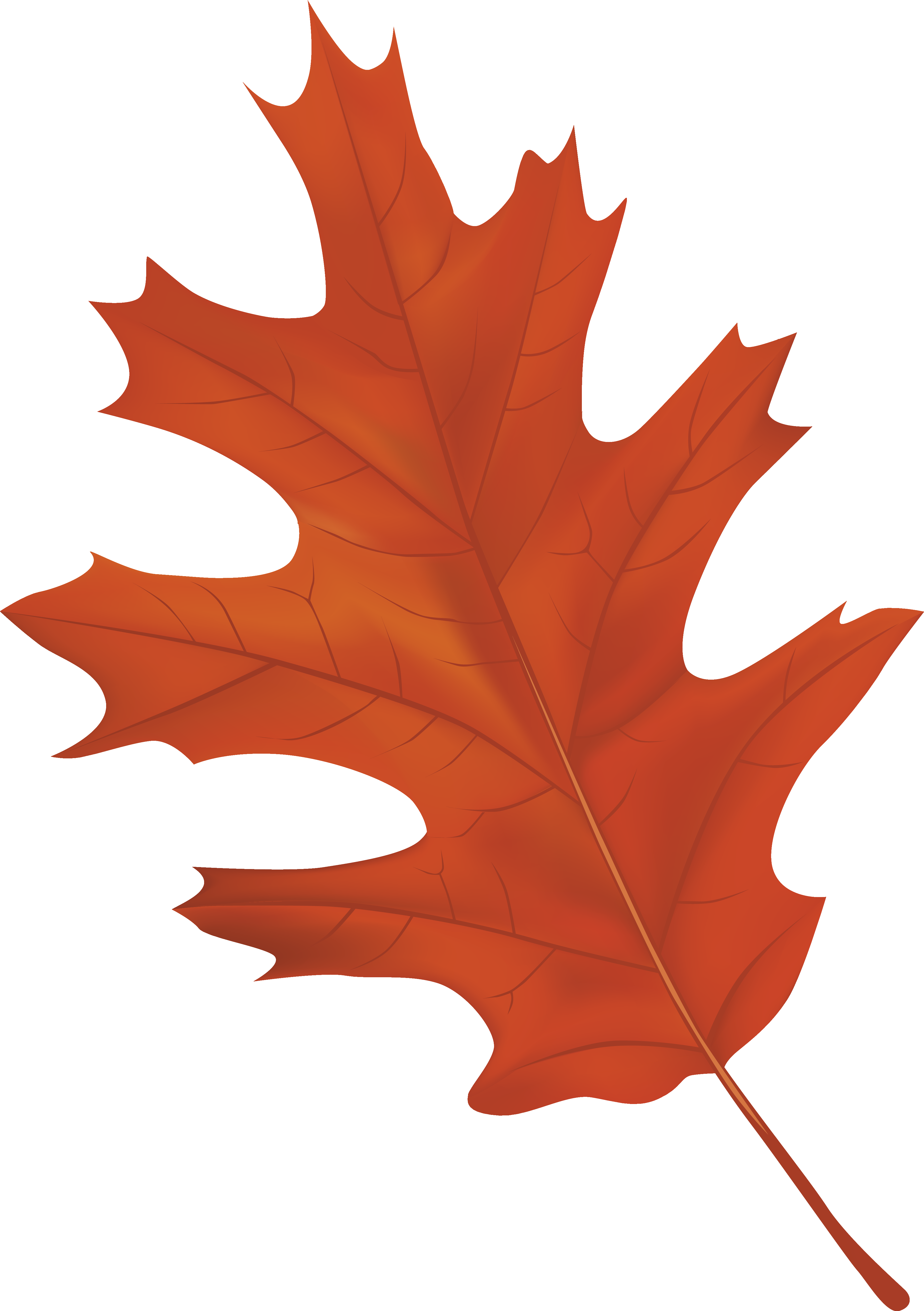 Fall leaf png. Brown autumn clipart image