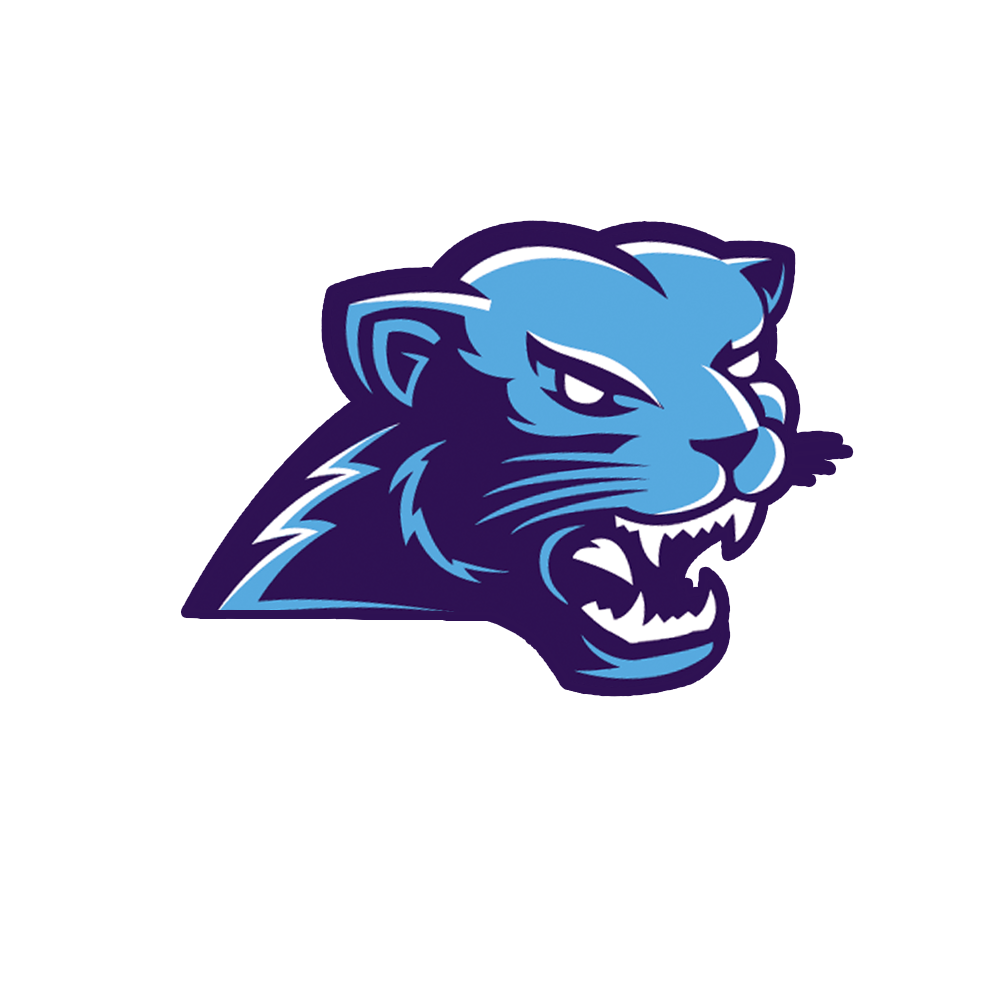 Gaming mascot logo png. Blue void only album