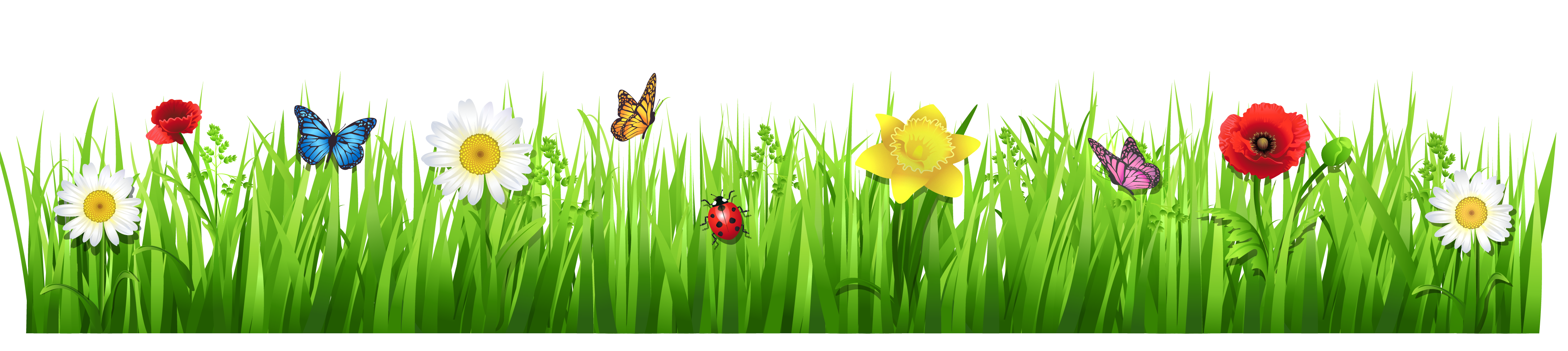 Garden clipart png. Projects to try pinterest