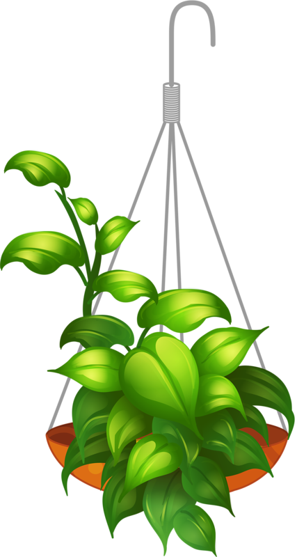 Garden clipart png. Hanging flower my valley
