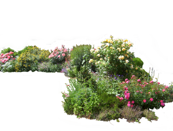Garden plants png. Flowered by hermitcrabstock on