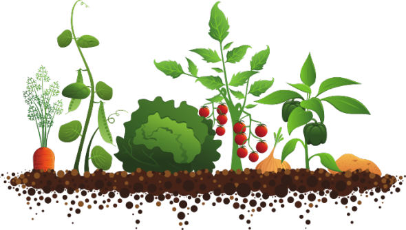 Garden plot png. Resource page calendar and