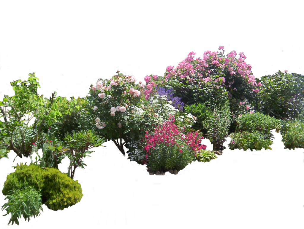 Garden png. Flowered by montvalentstock on