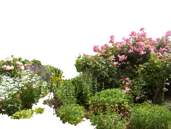 Garden png. Flowered by hermitcrabstock on