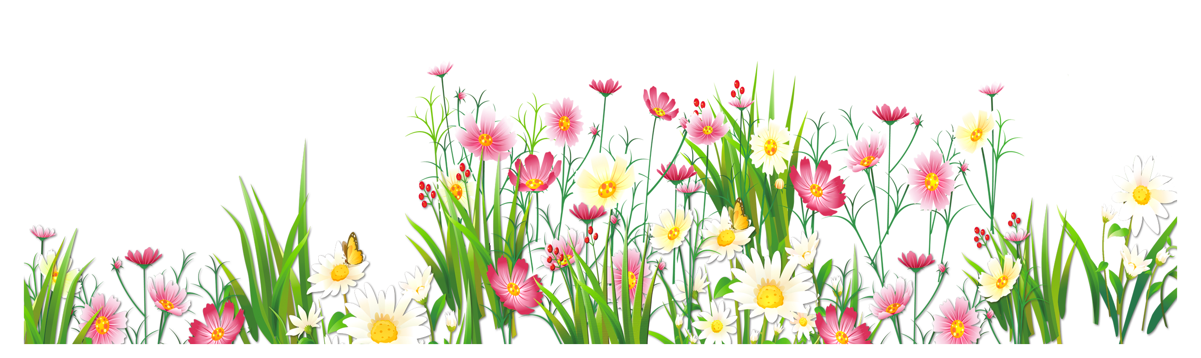 Flower garden png. Flowers and grass picture
