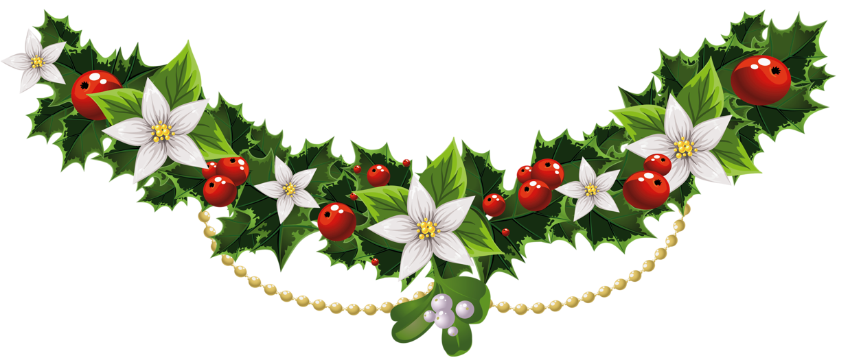 transparent holly