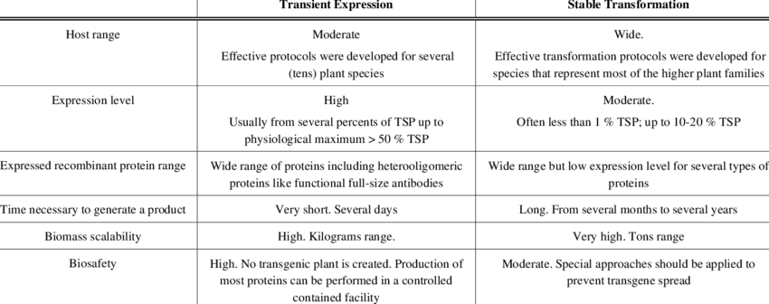 Transformation vector plant expression. Comparison of agrobacterium mediated