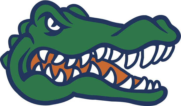 alligator clipart angry alligator