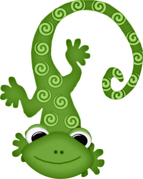 Gecko clipart kid. Best mexico images