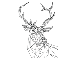 Geometric animal png. Animals v claire