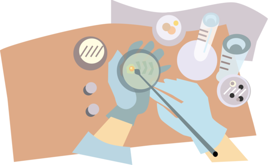 Cell clipart cell culture. Bacteria microorganism germ theory