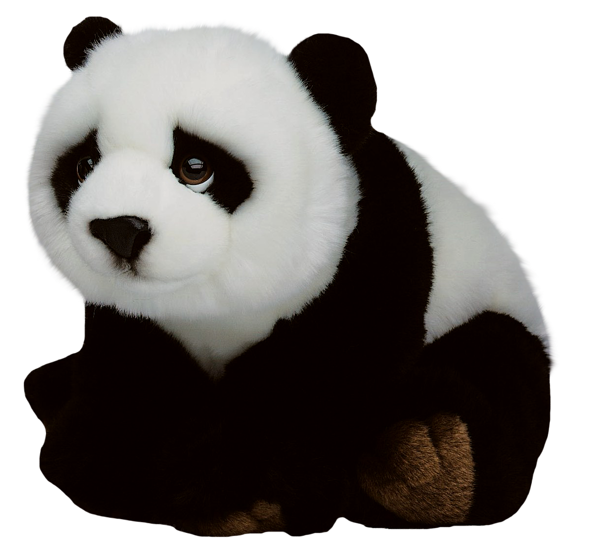 Giant panda png. Red vecteur transprent download
