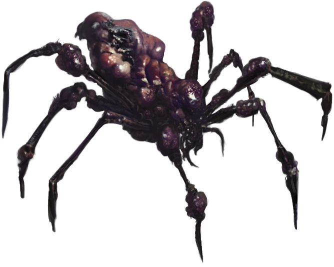 Giant spider png. Conan paintings