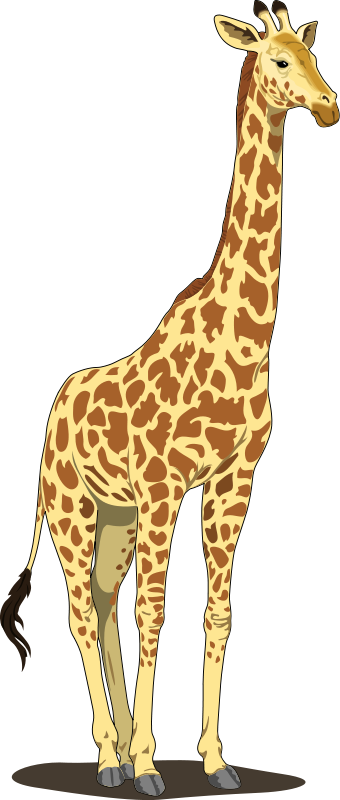 Giraffe clip art png. Royalty free animal images