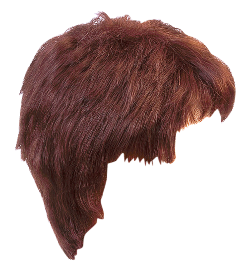 Girl wig png. Hair style transparent image