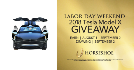 Giveaway drawing transparent. Horseshoe tunica will give