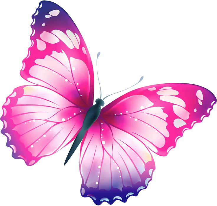 best transparent images. Glitter clipart light pink butterfly png library