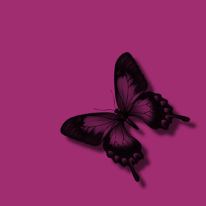 Glitter clipart light pink butterfly. Black free images at