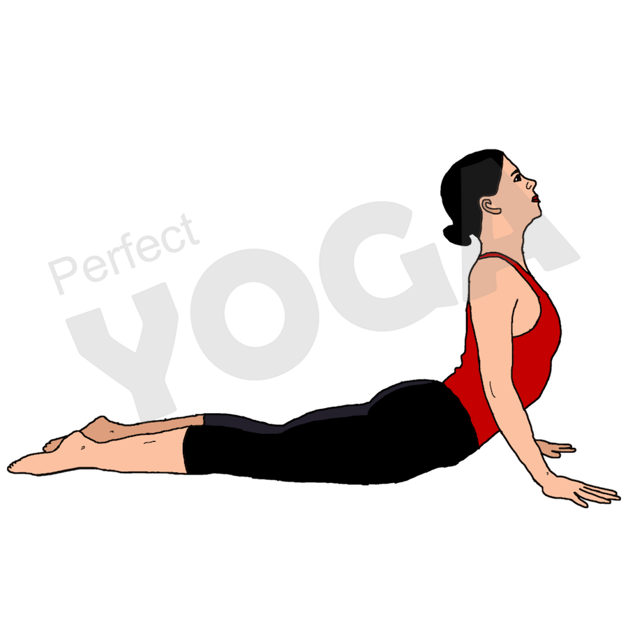 Glowing spine png. Yoga new for all