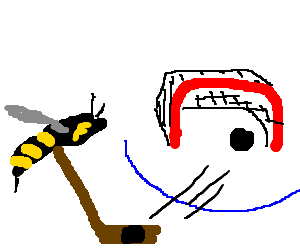 Goal drawing hockey. Wasp scores a by