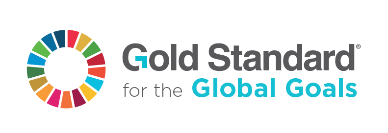 Goal vector bussiness. Gold standard for the