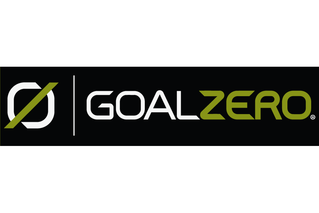 Goal vector logo. Images new year
