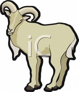 Goat clipart mountain goat.