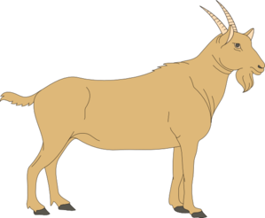 Goat vector png. Brown clip art at