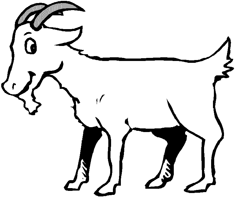 Drawing goats. Goat animals printable coloring