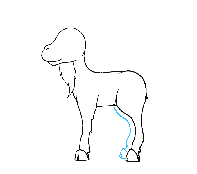 Goat drawing png. How to draw a