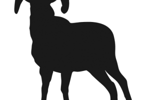 Goat silhouette png. Image related wallpapers