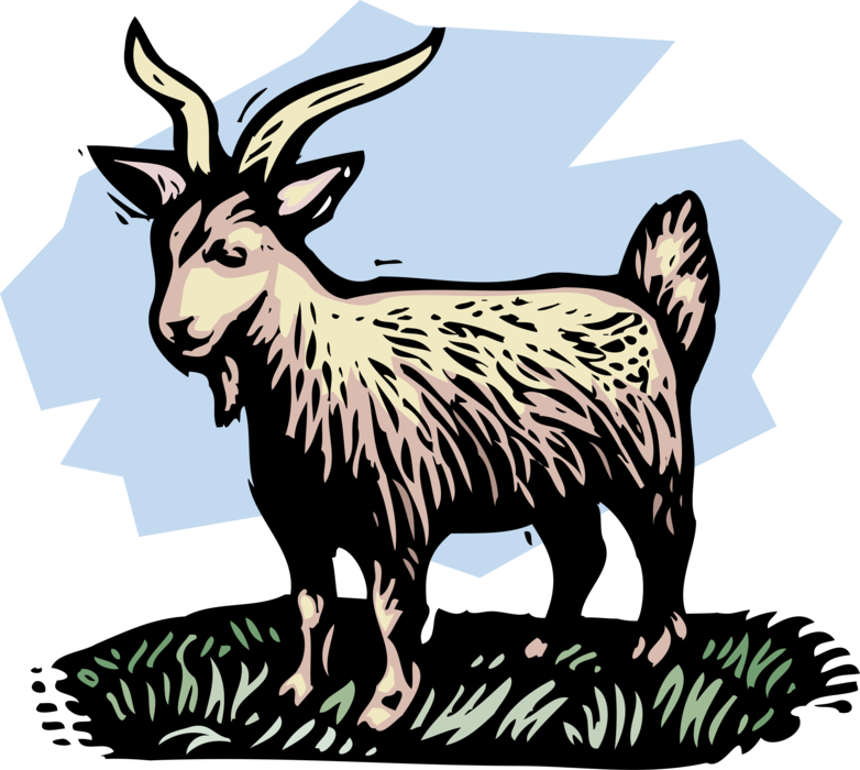 Goat vector png. Farm billy image illustration