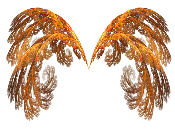 Gold angel wings png. Pin by carole borden