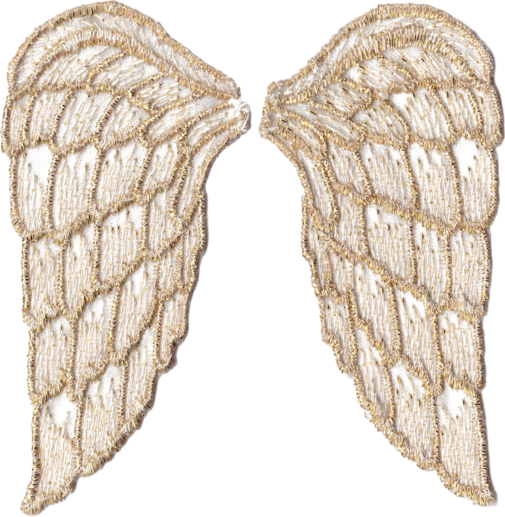 Png file transparent background. Golden angel wings free