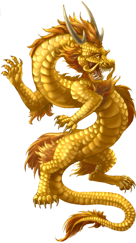 China transparent dragon. Chinese gold png stickpng
