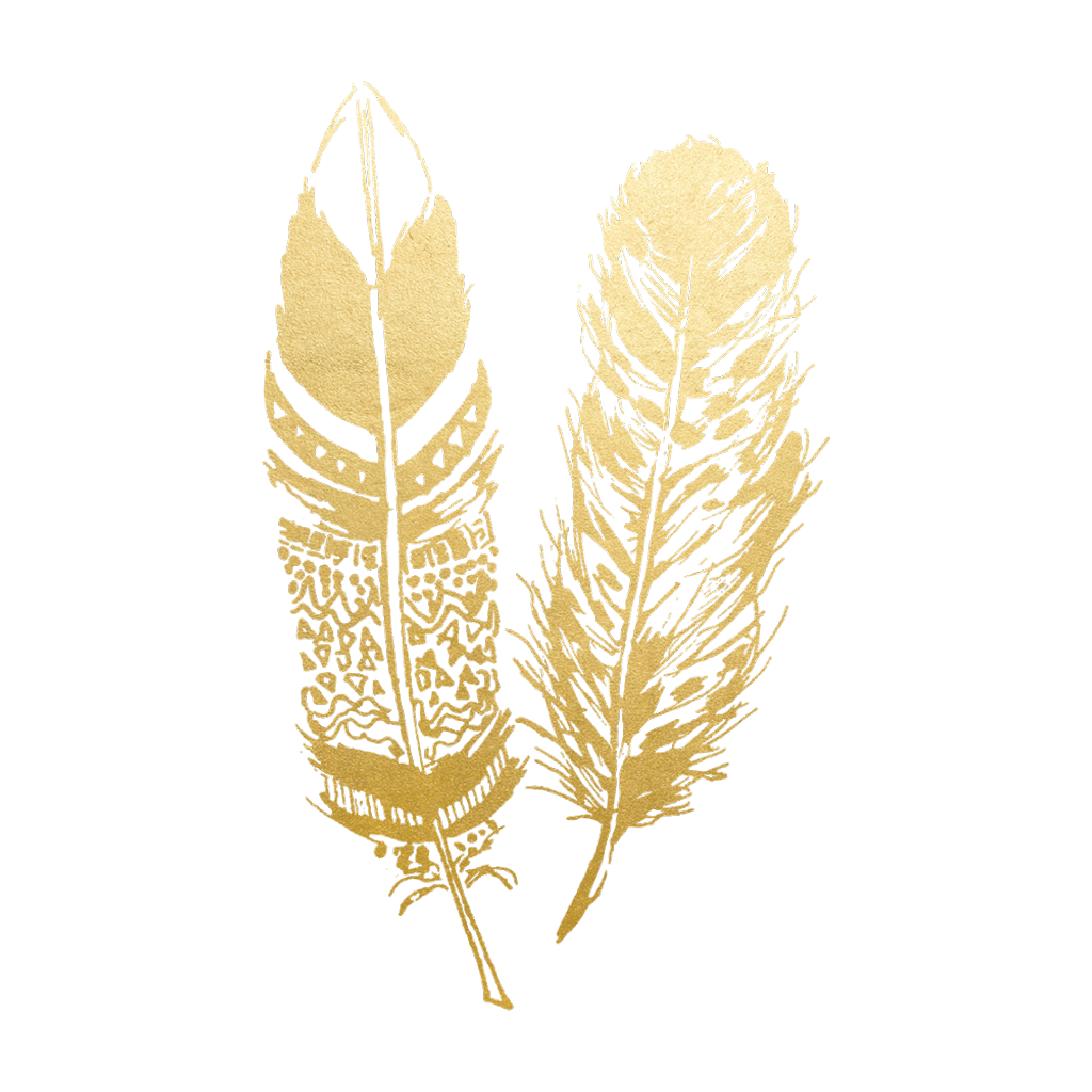 Boho feathers png. Gold feather native pretty