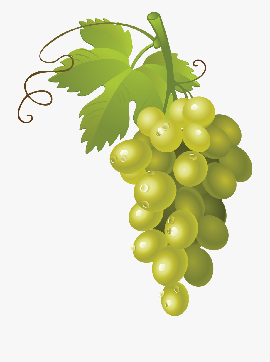 Gold grape. Download for free png