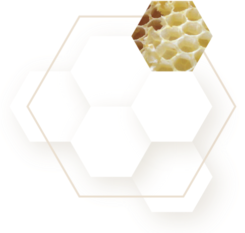 Gold honeycomb png. Download hd support tear
