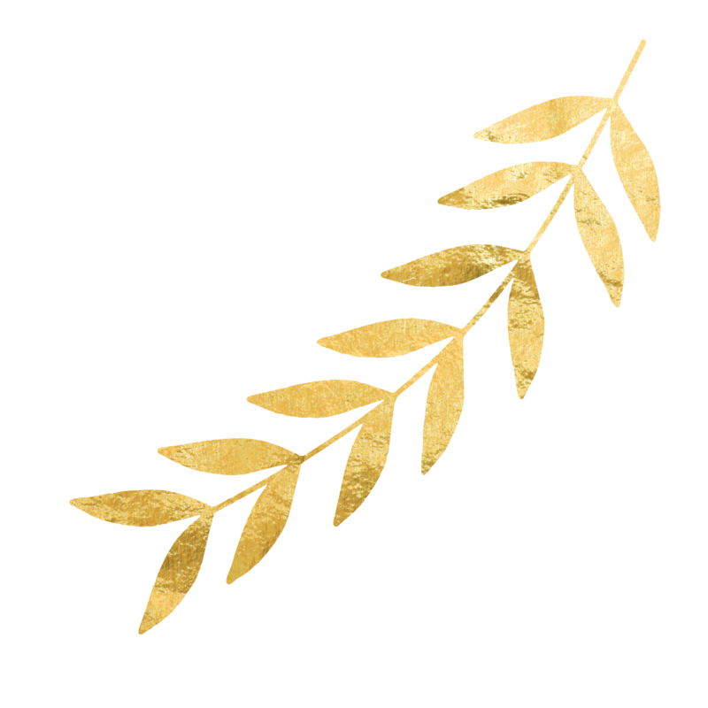 Gold leaves png. Wedding photography team covering