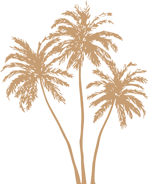 Gold palm leaves png. Arecaceae silhouette clip art