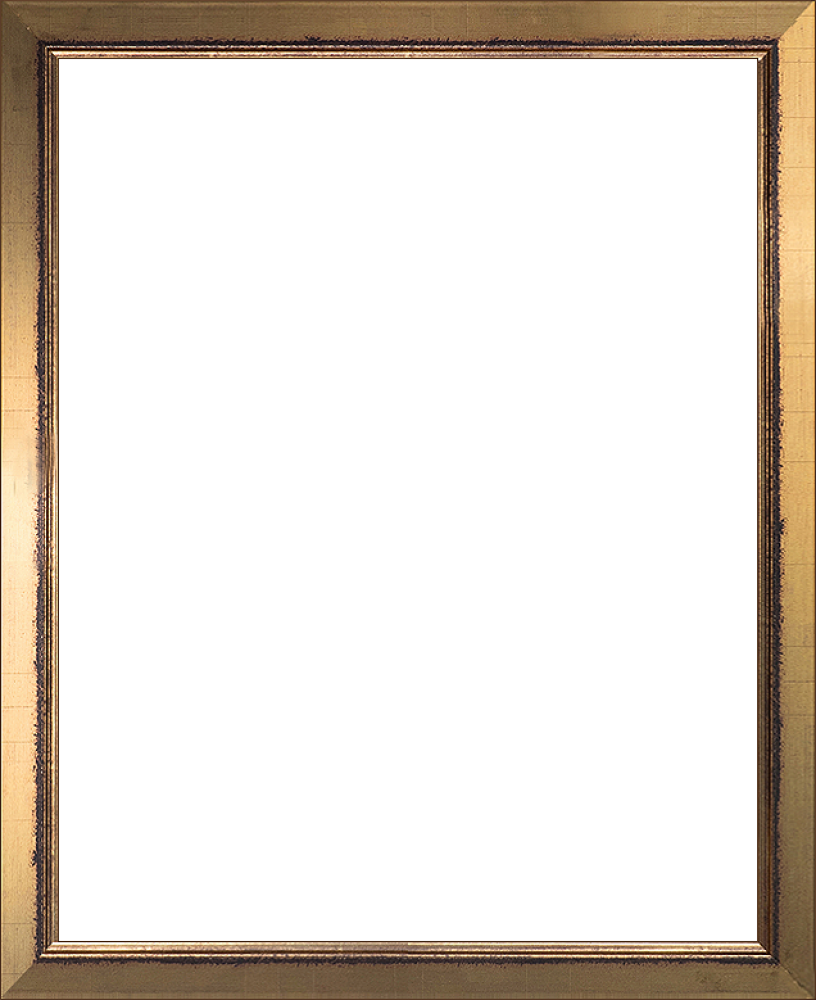 Vector gold photo frame. Wall art burnished finished