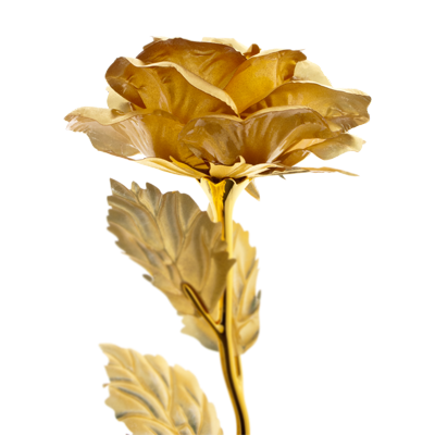 Gold rose png. Golden picture vector clipart