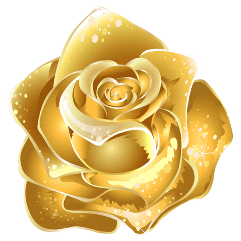 Gold rose png. Beautiful decor free images